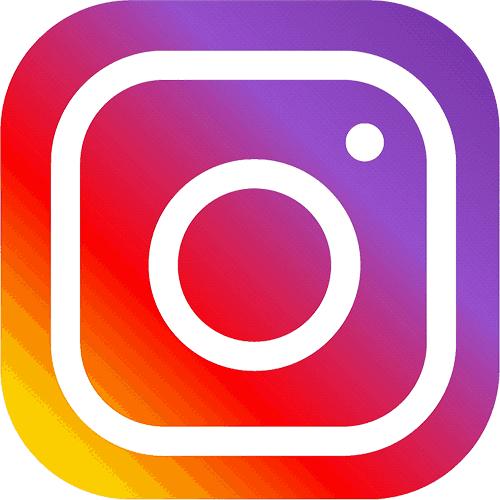 icone instagram f2rprod